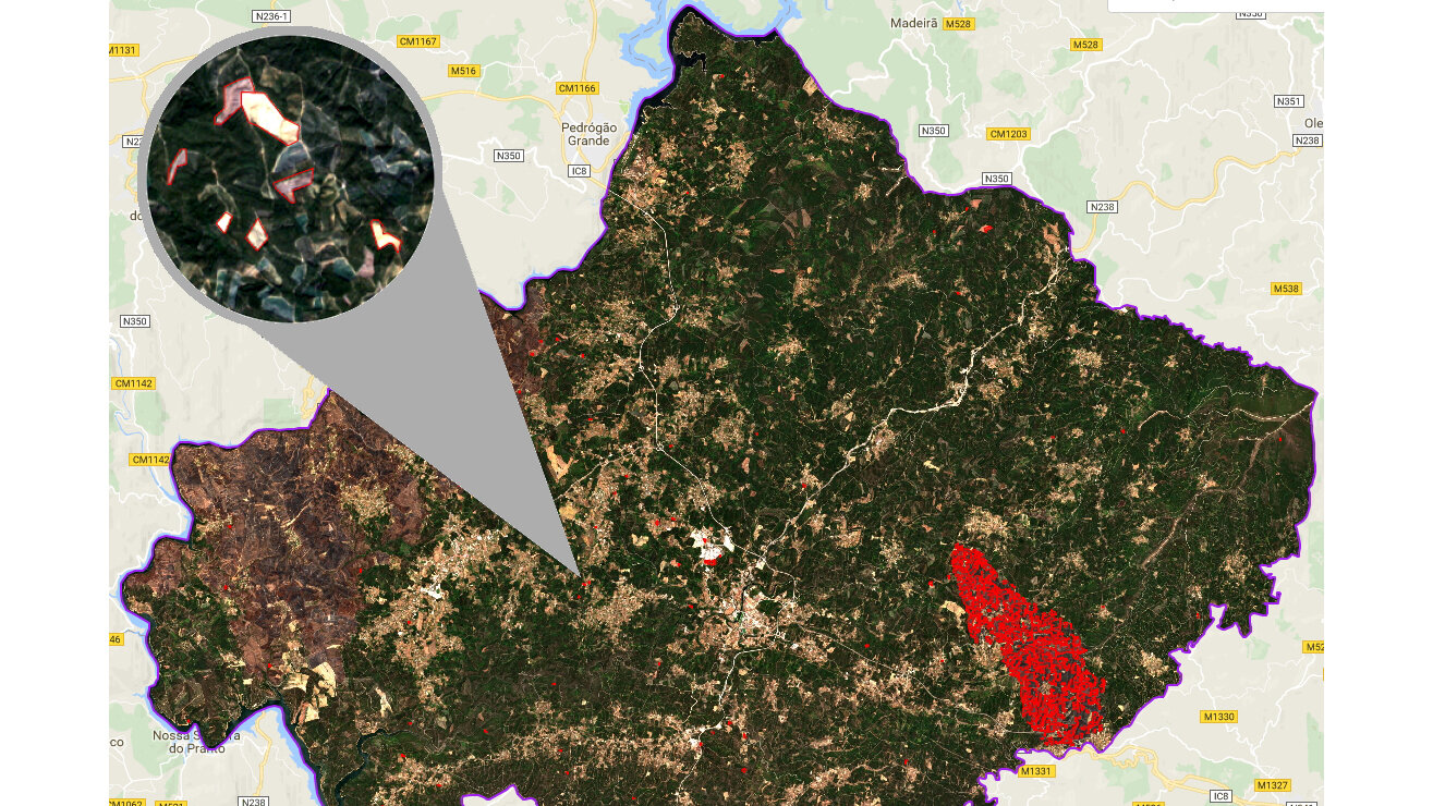 The red polygons show automated change detections in region of Sertã, Portugal (large: forest fire, small: disease outbreaks).