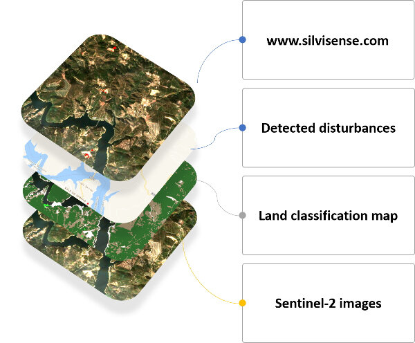 Silvisense is a service that provides automated forest monitoring using Copernicus satellite data.